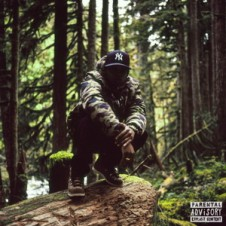 Remy Banks – higher. (2015)