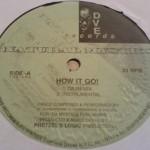 Natural Mystics – How It Go (Remix) – 1 Life 2 Live (1996)