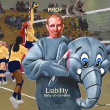 Prof – Liability (2015)