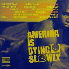 VA – America Is Dying Slowly (1996)