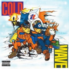 Timeless Truth – Cold Wave (2016)
