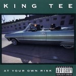 King Tee – At Your Own Risk (1990)