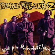 Rumpletilskinz – What Is A Rumpletilskin (1993)