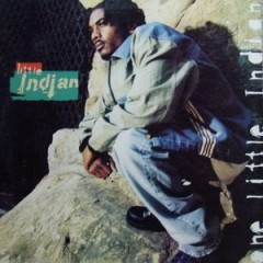 Little Indian – One Little Indian (1995)