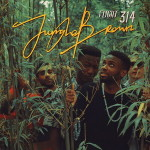 Jungle Brown – Flight 314 (2016)