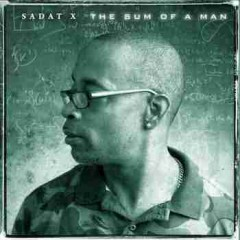 Sadat X & Diamond D – The Sum of a Man (2017)