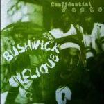 Bushwick Clique – Confidential Facts (1996)