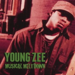 Young Zee – Musical Meltdown (2015)
