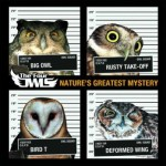 The Four Owls – Natures Greatest Mystery (2011)