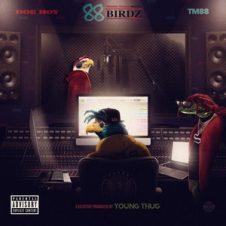 Doe Boy & TM88 – 88 Birdz (2018)