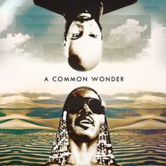Amerigo Gazaway – A Common Wonder (2017)