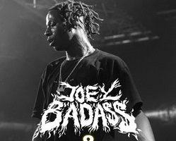 Joey Bada$$ & Statik Selektah Live at Hip Hop Kemp 2015 HDTVRip