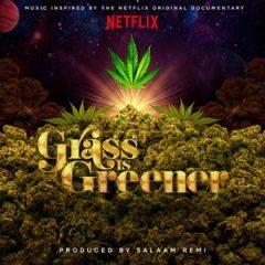 Salaam Remi – Grass Is Greener (2019)