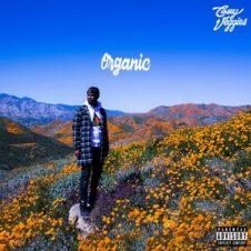 Casey Veggies – Organic (2019)