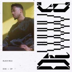 Black Milk – DiVE (2019)