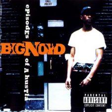 Big Noyd – Episodes Of A Hustla (1996)