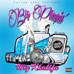 Wiz Khalifa – Big Pimpin' (2020)