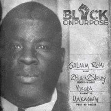 Salaam Remi – Black On Purpose (2020)